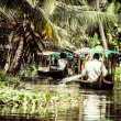 House boat in backwaters near palms in Alappuzha, Kerala, India — Stock Photo #28078045