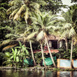 House boat in backwaters near palms in Alappuzha, Kerala, India — Stock Photo #28078199