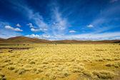 Пустыни и горы на голубое небо и белые облака на Альтиплано, Боливия — Стоковое фото
