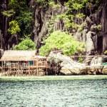 Green tree on a white sand beach. Malcapuya island, Coron, Philippines. — Stock Photo