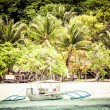 Green tree on a white sand beach. Malcapuya island, Coron, Philippines. — Stock Photo