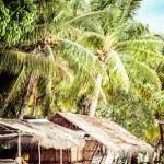 Green tree on a white sand beach. Malcapuya island, Coron, Philippines. — Stock Photo #28157175
