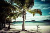 Arbre vert sur une plage de sable blanc. malcapuya île, coron, philippines. — Photo