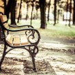 Bench in autumn park — Stock Photo #29652985