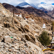 Beautiful scenery, Leh, Ladakh, Jammu and Kashmir, India — Stock Photo