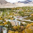 Ladakh in Indian Himalayas, Himachal Pradesh, India — Stock Photo