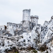 The old castle ruins of Ogrodzieniec fortifications, Poland. — Stock Photo
