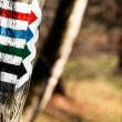 Trail sign in Bieszczady Mountains, Poland — Stock Photo #35139271