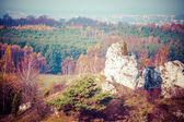 Autumn colors rural landscape near Ogrodzieniec, Poland — Stock Photo