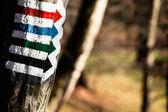 Trail sign in Bieszczady Mountains, Poland — Stock Photo