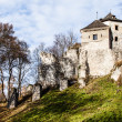 Castle ruins on a hill top in Ojcow, Poland — Stock Photo