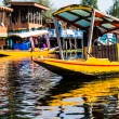 Shikara boat in Dal lake , Kashmir India — Stock Photo #35187857