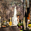 Old cemetery Na Peksowym Brzyzku in Zakopane in Poland — Stock Photo