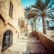 The old streets of Jaffa, Tel Aviv, Israel — Stock Photo #36588691