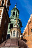 Wawel Cathedral - famous Polish landmark on the Wawel Hill in Cracow — Stock fotografie