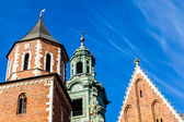 Wawel Cathedral - famous Polish landmark on the Wawel Hill in Cracow — Stok fotoğraf