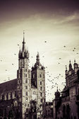 View at St. Mary's Gothic Church, famous landmark in Krakow, Poland. — Stock Photo