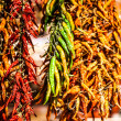 Red Chili Peppers hanging. Close up. — Stock Photo #38248631