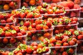 свежий, красная клубника на местном фермерском рынке в барселоне испания — Стоковое фото
