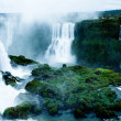 Iguassu Falls, the largest series of waterfalls of the world, view from Brazilian side — Stock Photo #39156283