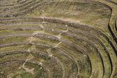 Peru, moray, antigos terraços circulares do inca. provável, que há o laboratório incas da agricultura — Fotografia Stock