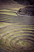 Peru, Moray, ancient Inca circular terraces. Probable there is the Incas laboratory of agriculture — Stock Photo