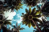 Ciel bleu de l'île havelock avec nuages blancs, les îles andaman, inde — Photo