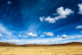 A desert on the altiplano of the andes in Bolivia — ストック写真
