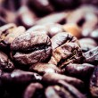 Coffee bean on macro for background — Stock Photo #39851459
