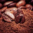 Coffee bean on macro for background — Stock Photo #39851505