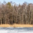 Traditional polish landscape in winter, frozen lake. — Stock Photo #40086385