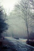 Winter time in local park, Poland. — Stockfoto