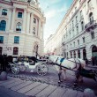Traditional horse-drawn Fiaker carriage at famous Hofburg Palace in Vienna, Austria — Stock Photo #43031217