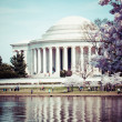 Pink cherry blossoms in spring framing the Jefferson Memorial in Washington DC — Stock Photo