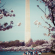 Washington DC cherry blossom with lake and Washington Monument. — Stock Photo