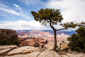 Grand Canyon National Park, Arizona — Stock Photo