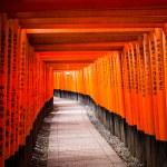 Fushimi Inari Taisha Shrine in Kyoto, Japan — Stock Photo #46343427