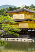 Ünlü altın köşk kinkaku-ji, kyoto, Japonya — Stok fotoğraf