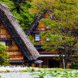 Traditional and Historical Japanese village Ogimachi - Shirakawa-go, Japan — Stock Photo #46353371