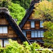 Traditional and Historical Japanese village Ogimachi - Shirakawa-go, Japan — Stock Photo #46353403