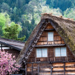 Traditional and Historical Japanese village Ogimachi - Shirakawa-go, Japan — Stock Photo #46353469