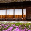 Traditional and Historical Japanese village Ogimachi - Shirakawa-go, Japan — Stock Photo #46353473