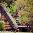 Traditional and Historical Japanese village Ogimachi - Shirakawa-go, Japan — Stock Photo #46353613