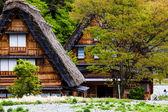 Traditional and Historical Japanese village Ogimachi - Shirakawa-go, Japan  — Stock Photo