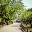 Nagoya Castle, Japan — Stock Photo #46411105