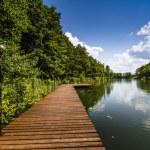 Lake Wigry National Park. Poland — Stock Photo #50340105