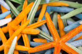 Starfish (Asteroidea) for sale at market.  — Stock Photo