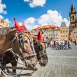 Horse Carriage waiting for tourists at the Old Square in Prague. — Stock Photo #51775667