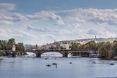 Vltava river and bridges in Prague bird view panorama  — Stok fotoğraf