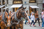 Horse Carriage waiting for tourists at the Old Square in Prague. — Stock Photo